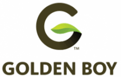 February 2019-Golden Boy